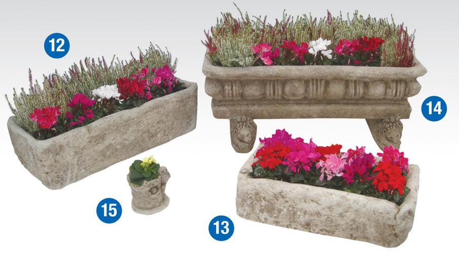 planters_3